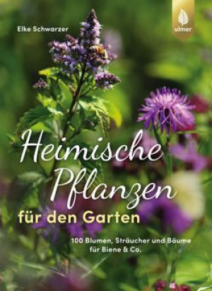 Heimische Pflanzen für den Garten