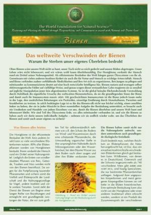 Das weltweite Verschwinden der Bienen